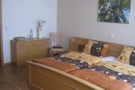 Urlaub auf dem Winzerhof - Monzingen - Wohnung