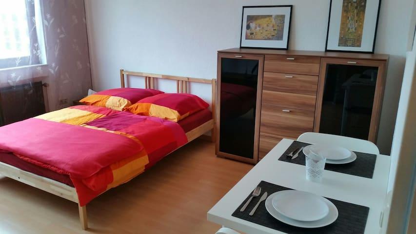 1 Zimmer Appartement nahe Rhein - Mainz - Apartament