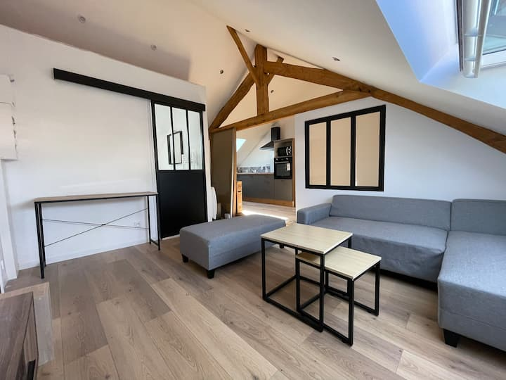Appartement type loft Falaise
