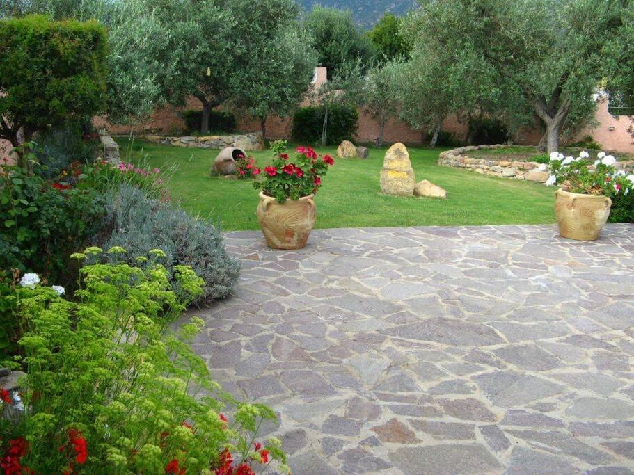 Prato verde foto 2