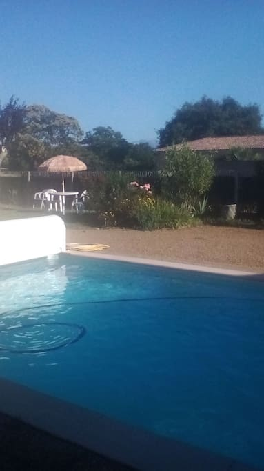 piscine et salon de jardin
