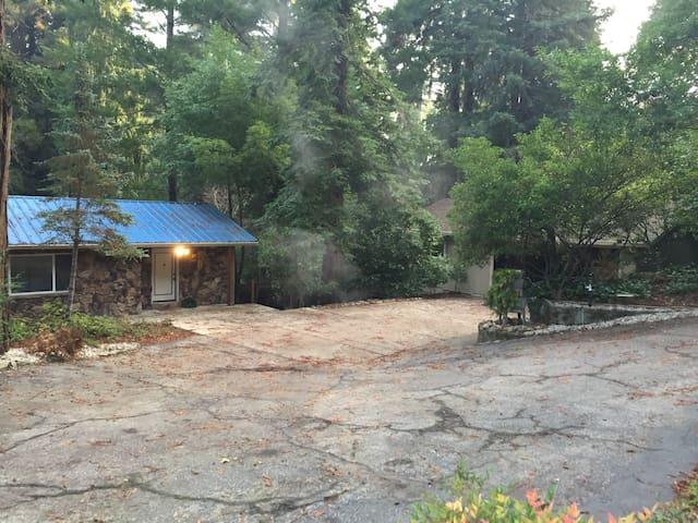 Redwood Getaway #2
