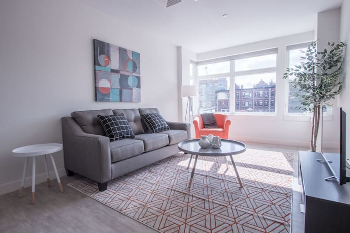 Lively 2BR in Fenway - Boston - Apartment