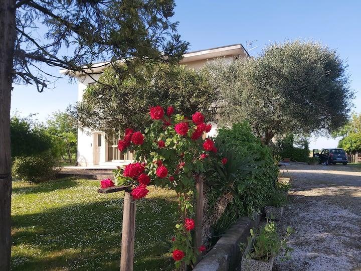 Da Celeste  casa immersa nel verde   Montegaldella