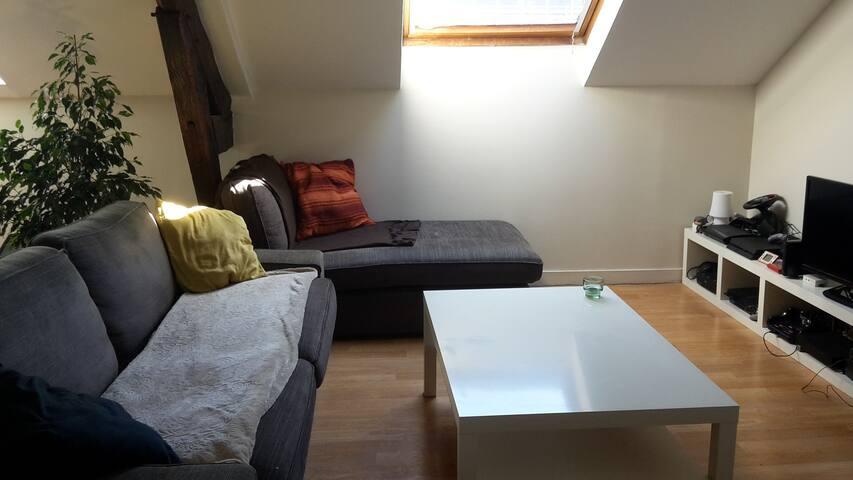 Grande chambre privée proche centre ville - Nantes - Bed & Breakfast