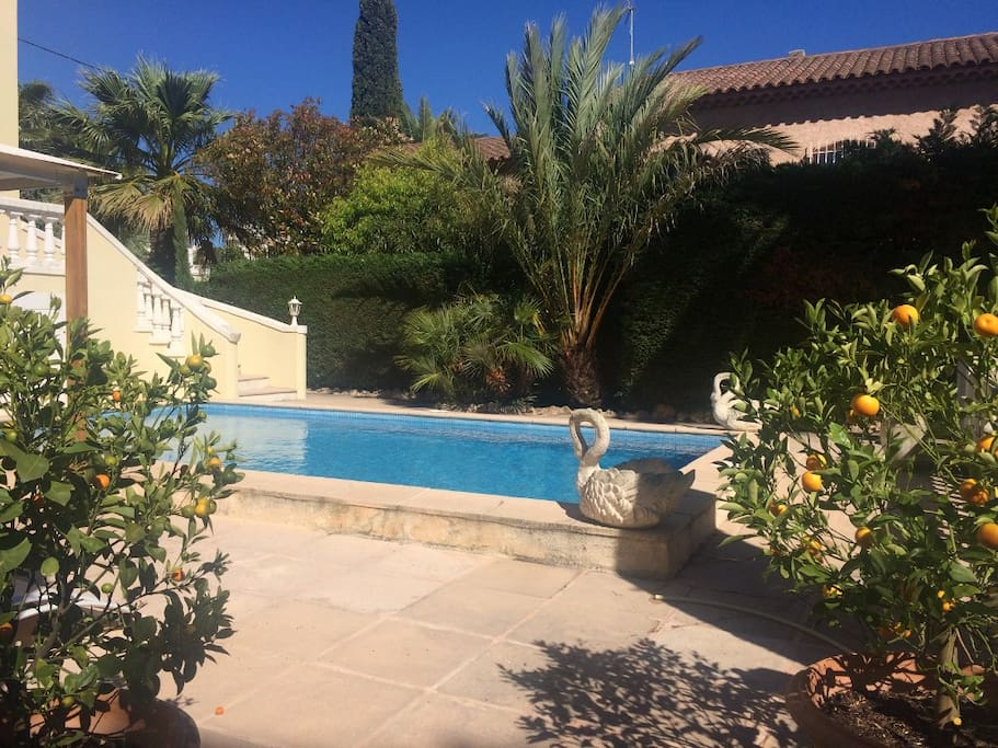 Charmant rez de villa avec piscine ville in affitto a for Piscine st gregoire