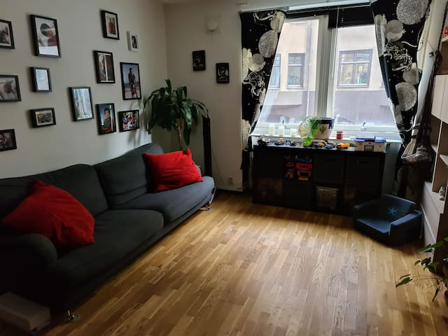 Homely Central apartment in Malmö C