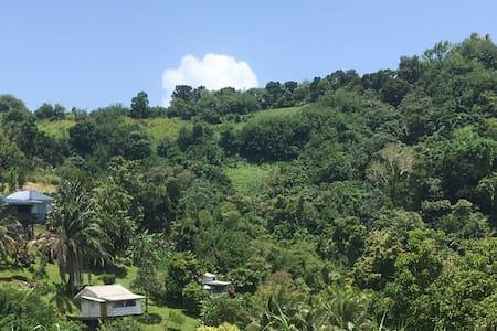 Forêt Tropicale,vue Montagne Pelée& Mer-Mandarine