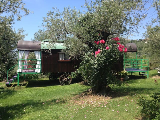 Caravan Rigogolo #1 gypsy caravan