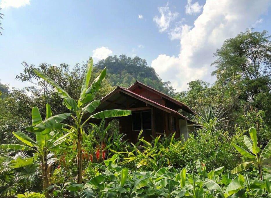 Teak Wood Hut In A Lush Garden Cabins For Rent In Tham