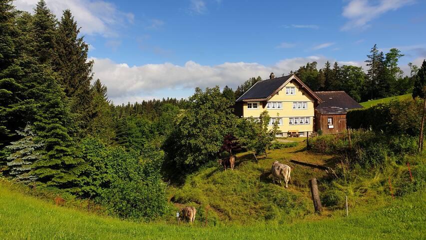 Walzenhausen - Appenzellerhaus mit Charme