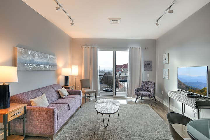 Luxury Condominium in the Center of Downtown Asheville