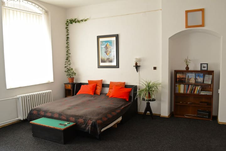 Private studio flat in the centre of Tabor.