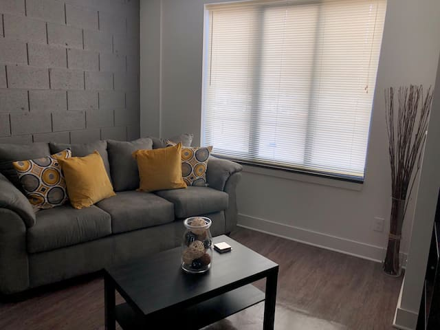 Stylish 2 bedroom 1 block from The Fisher Theatre!