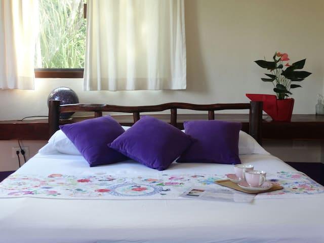 Pool + Cenote: Room Violeta - Chemuyil