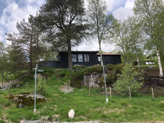 Cabin in Sirdal, Sinnes - close to Kjerag