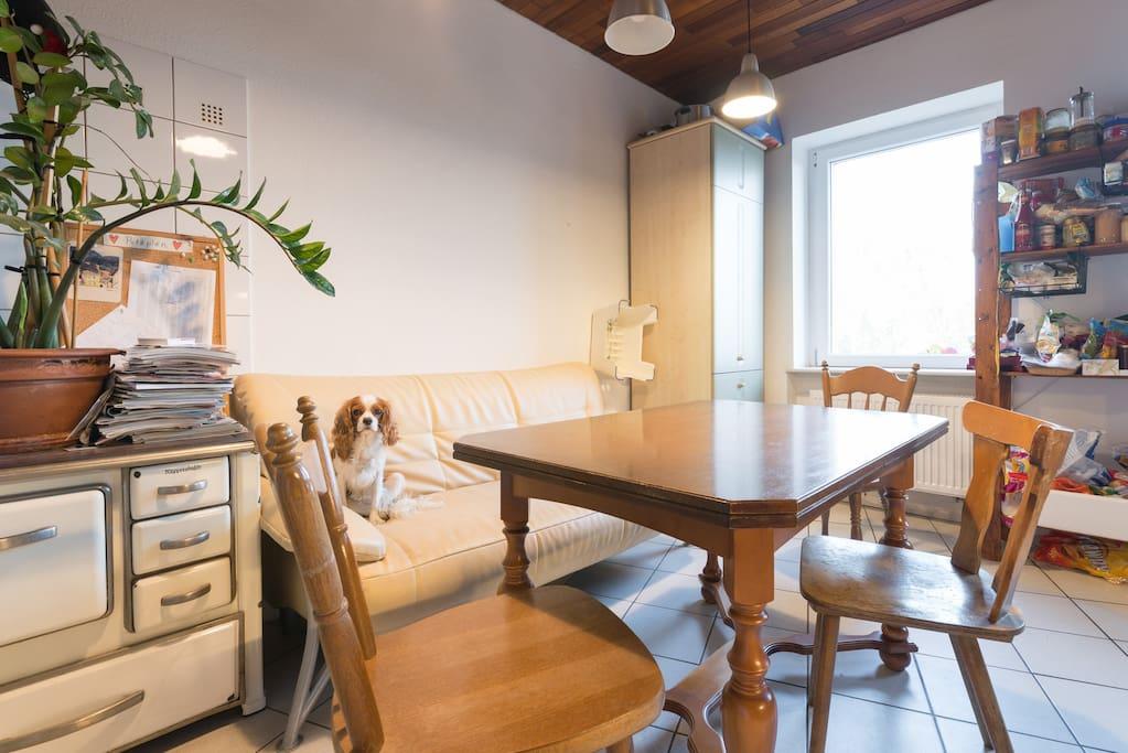 20qm zimmer in maisonette wohnung wohnungen zur miete in frankfurt am main hessen deutschland. Black Bedroom Furniture Sets. Home Design Ideas