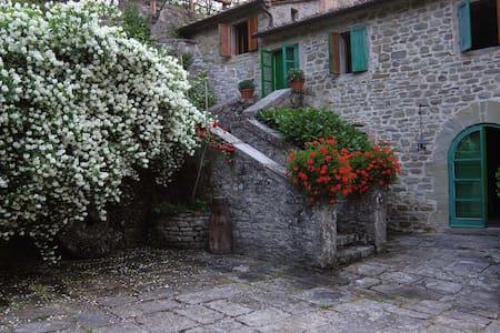 Antico mulino ampio parco 3 piscine - Capraia - Villa