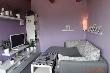 Cozy apartment near Brno-the exhibition area - Rosice - House