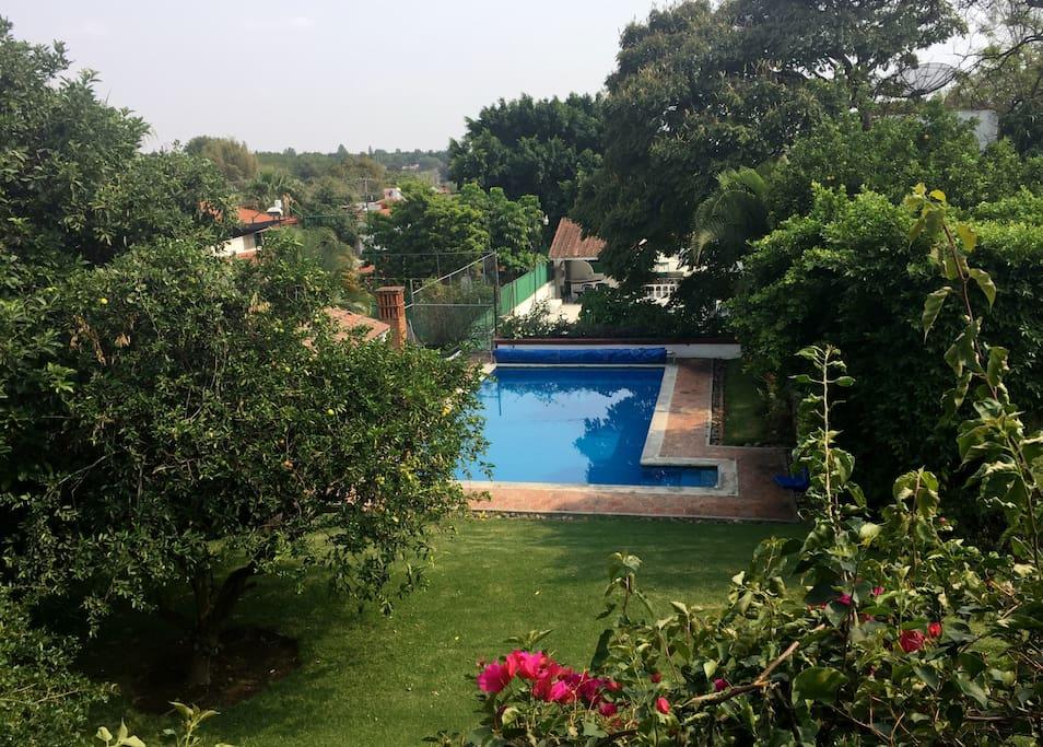 Vista del jardín y la alberca desde la planta alta