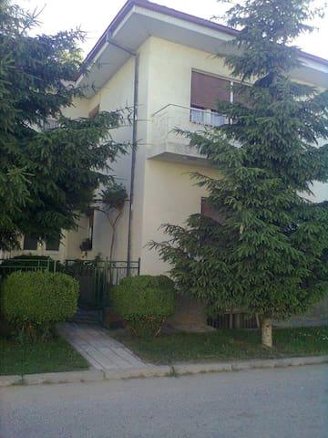 House Poli