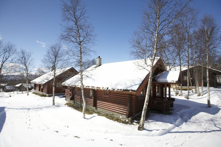 Cozy log cabin near the city center, for 8 persons