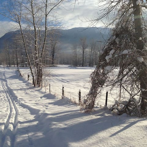 Lots of places within minutes of the condo to cross country ski.