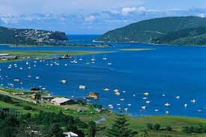 Lilly Pad - Knysna - Apartment