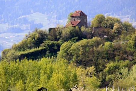 Castello di San Zeno Park Residence - Tirolo/Tirol