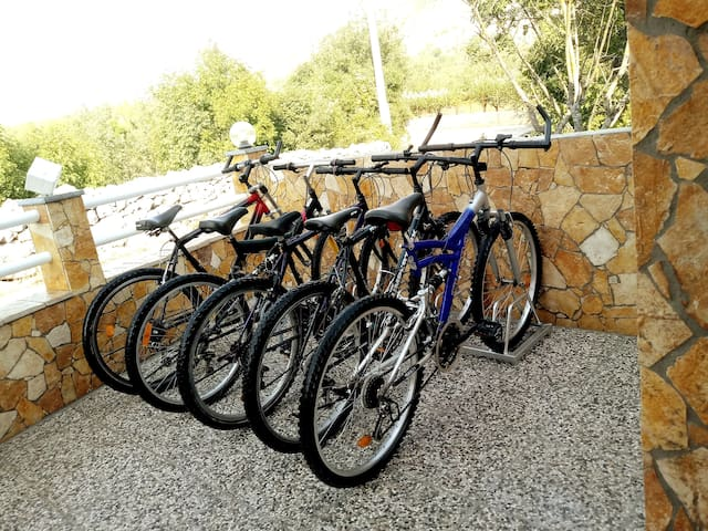 (NEW PHOTO) FREE BIKES, SPEND YOUR TIME CYCLING AND EXPLORING NATURE