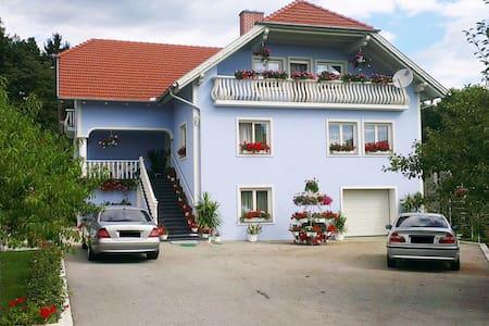 Herrliche Ruhe in der Thermenregion - Wörth an der Lafnitz - Appartamento