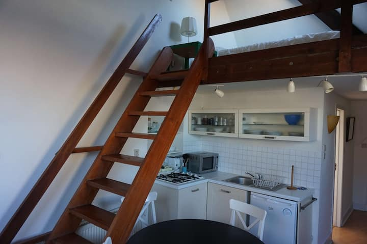 ONE BEDROOM FLAT NEAR SAINTE-CATHERINE