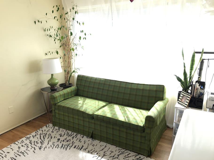 Second Bedroom/Office