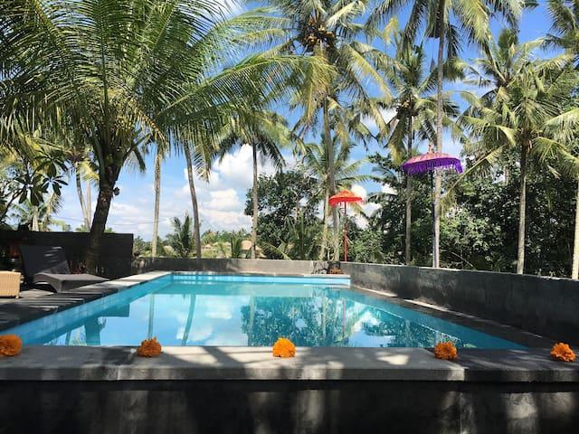 SPECIAL price, pool, wifi, AC, breakfast