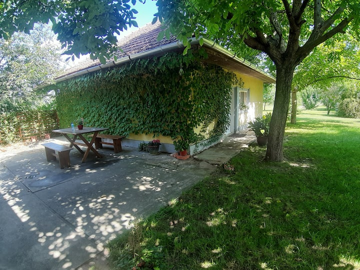 Hungarian farmhouse