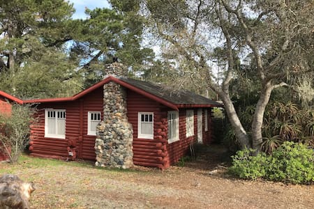 The Cabin in Cambria