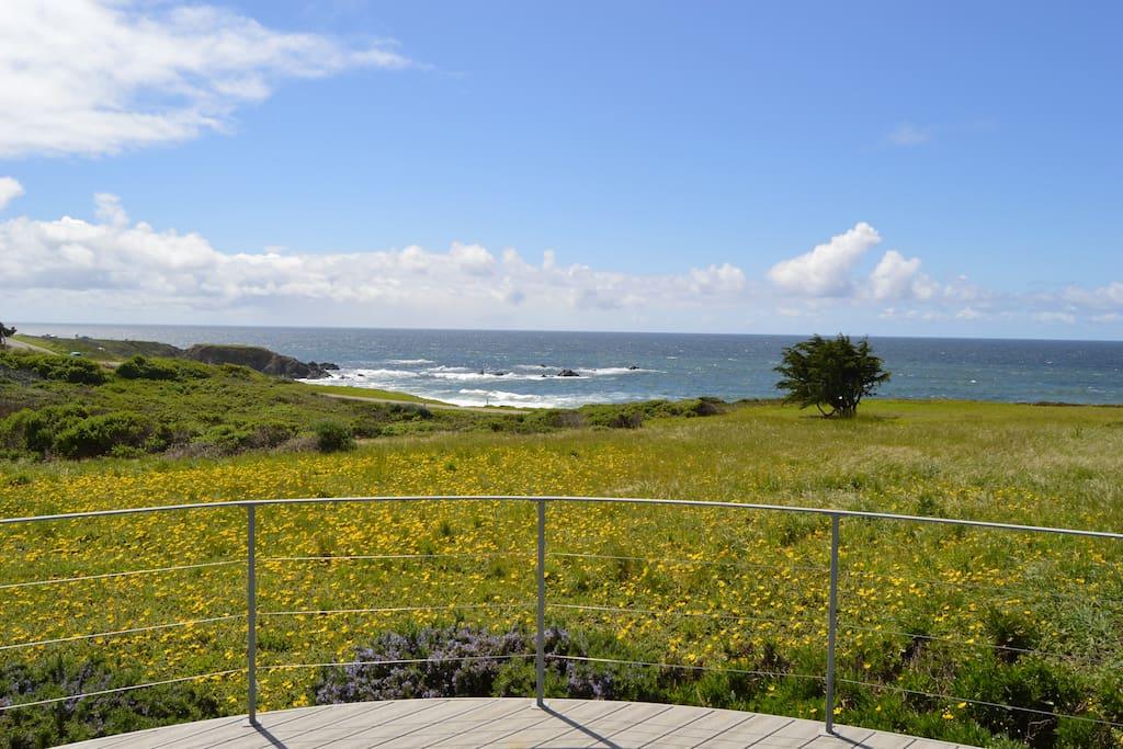 Bodega Bay Beach Home View