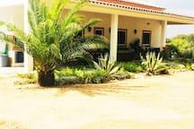 Casa dos Sobreiros - uma casa que se desenvolve numa larga planície alentejana