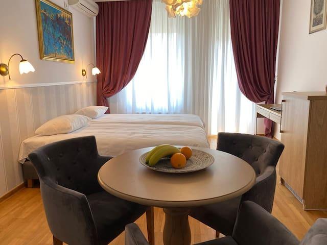Luxury Apartment in Belgrade