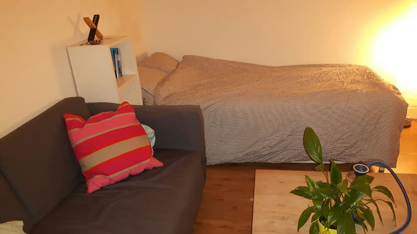 GREAT LOCATED,CLEAN & COMFY ROOM:-) - Voorburg - Apartemen