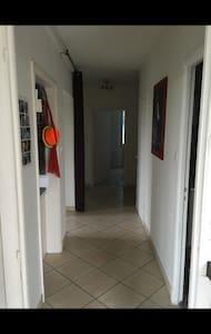 APPARTEMENT 80 m2 - Albi