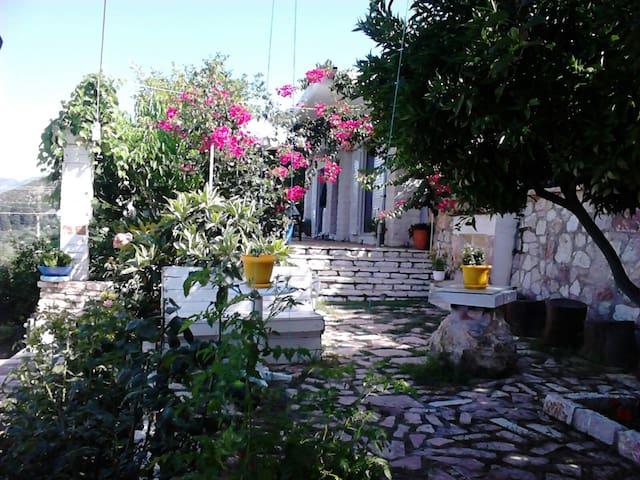 """Villa """"Niko Aristidh Ali"""" - Piqeras - House"""