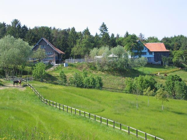 Ferien mit Tieren auf Erlebnis- & Therapiehof - Sankt Margrethen - Condominium