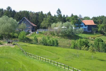 Ferien mit Tieren auf Erlebnis- & Therapiehof - Sankt Margrethen - Wohnung