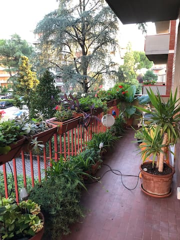 Room by greenery in Florence