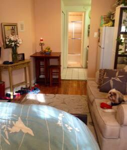 Studio on Upper East Side - New York - Apartment