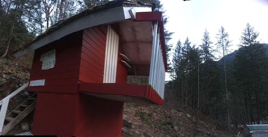 The Bär Hut at Deer Park Haven Farm
