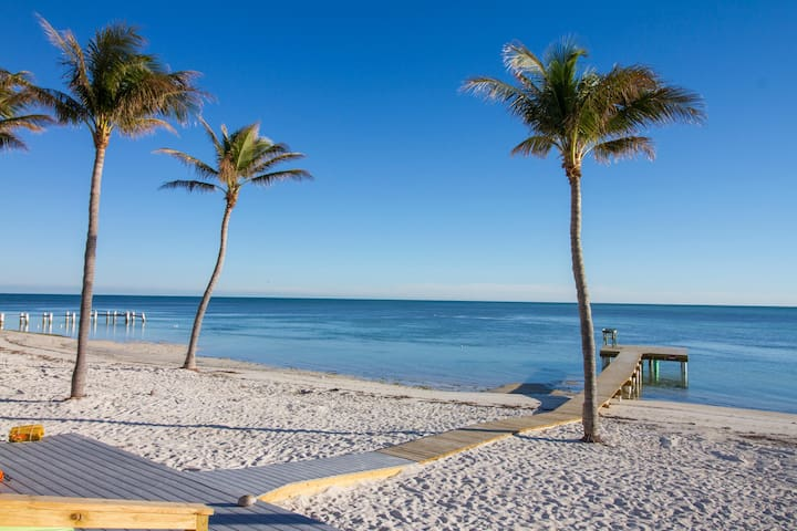 Oceanfront duplex with beautiful beach and dock for boat access! Dogs OK!