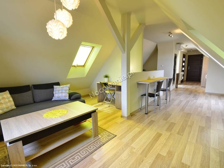 Villa Aviator Apartament JUNIOR - Jaworze Beskidy