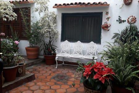 HOSPEDAJE CENTRICO-Estacionamiento - Guanajuato - Guesthouse